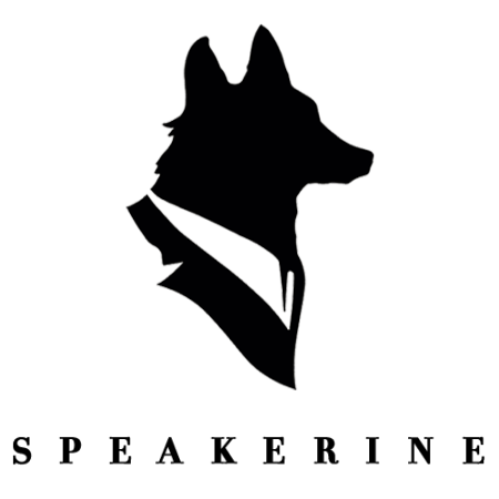 Logo for Speakerine / Florent Bodart