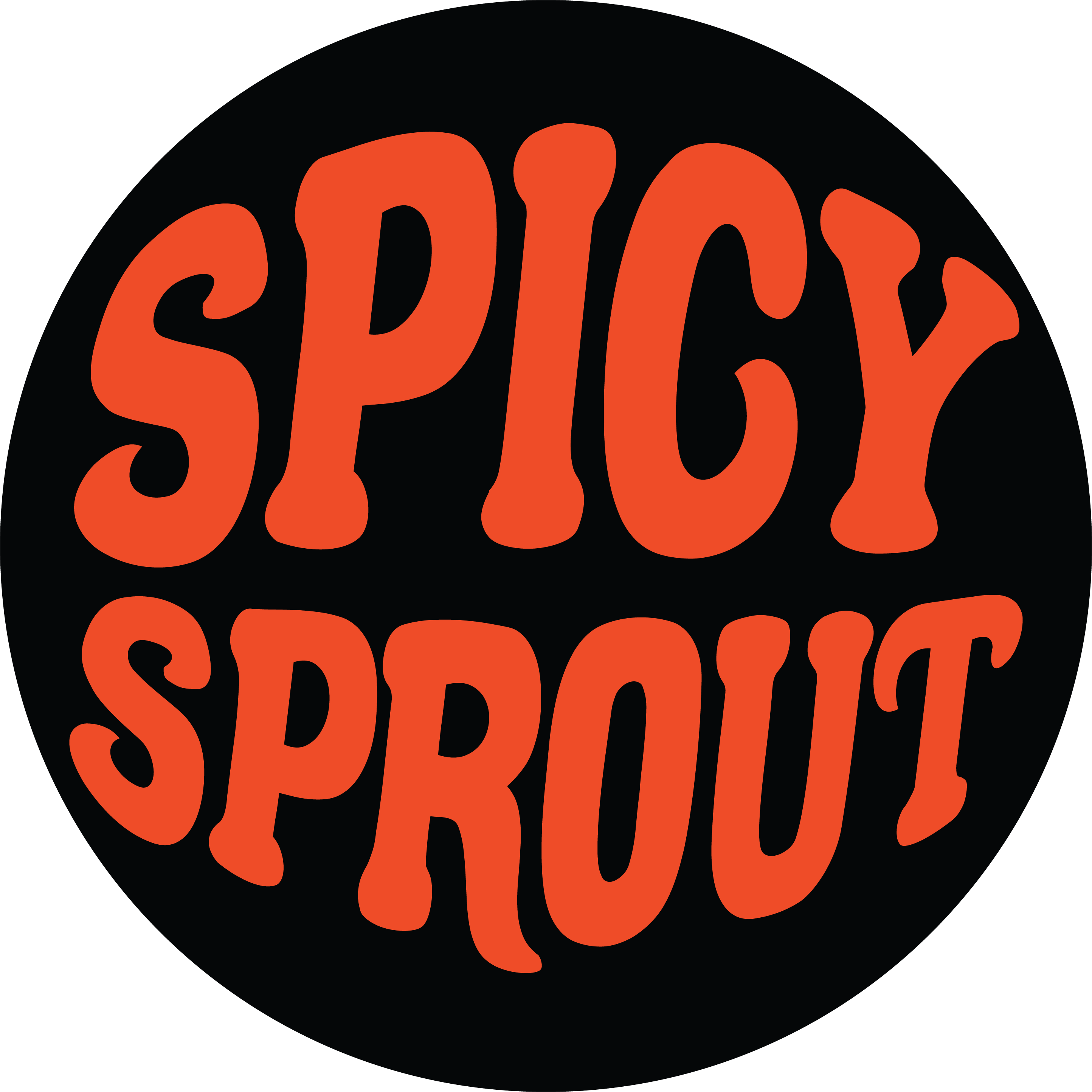 Logo for spicysprout's Artist Shop