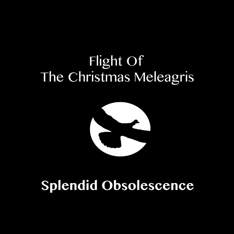 Flight of the Christmas Meleagris Album Cover - Splendid Obsolescence by Splendid Obsolescence