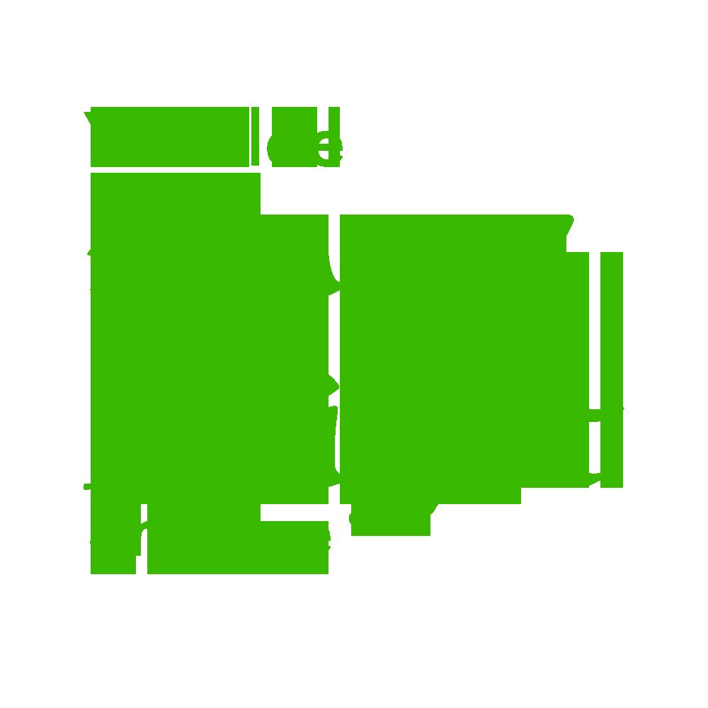 Starry Knight Studios Logo