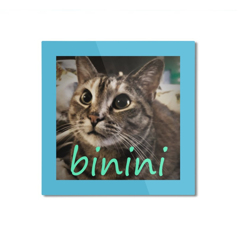 Binini Home Mounted Aluminum Print by steamwhistlealley's Artist Shop