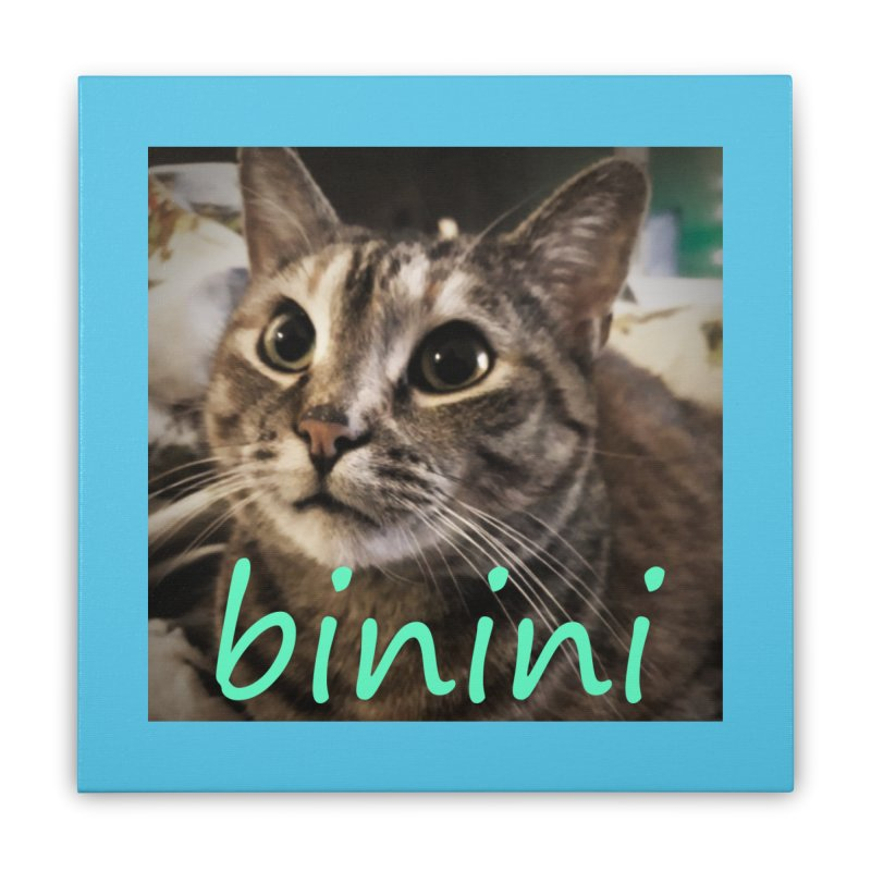 Binini Home Stretched Canvas by steamwhistlealley's Artist Shop