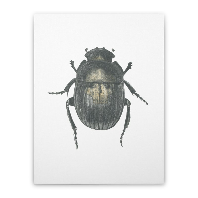 Death Scarab Home Stretched Canvas by Stephanie Inagaki