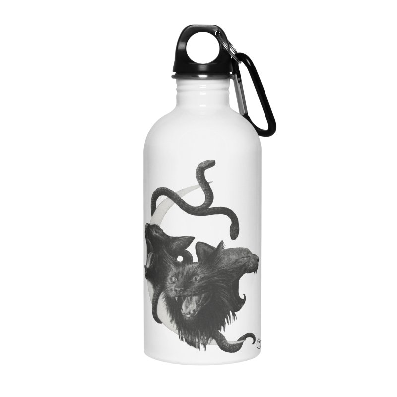 Harpies Accessories Water Bottle by Stephanie Inagaki