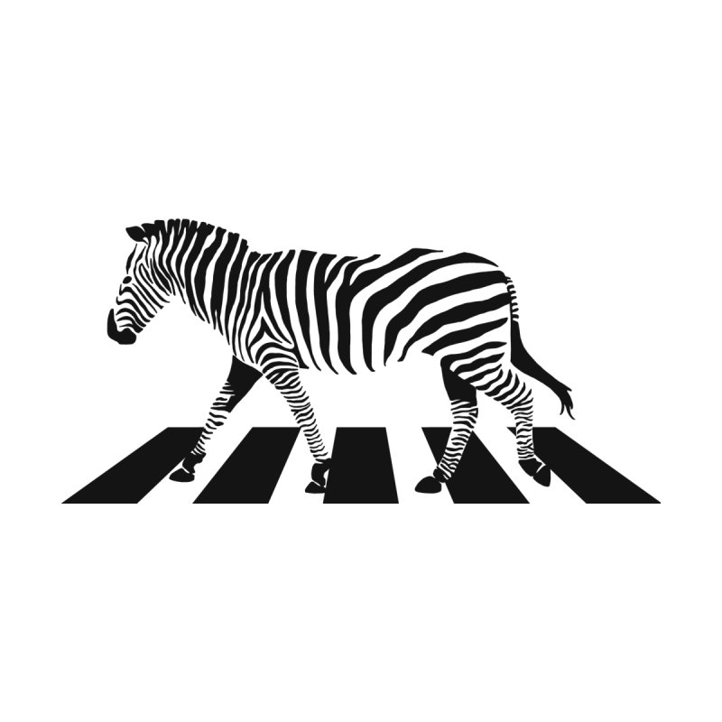 Zebra Crossing by steveash's Artist Shop