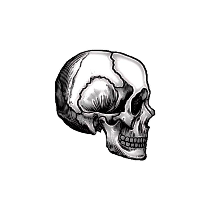 Skull by Strange Circle