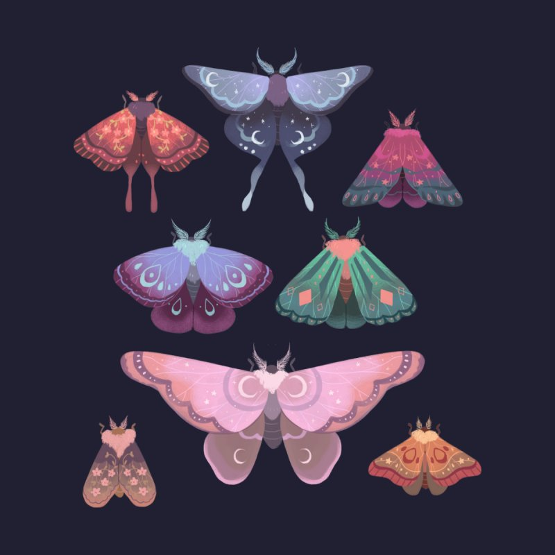 Magical Moths Women's T-Shirt by StrangelyKatie's Store