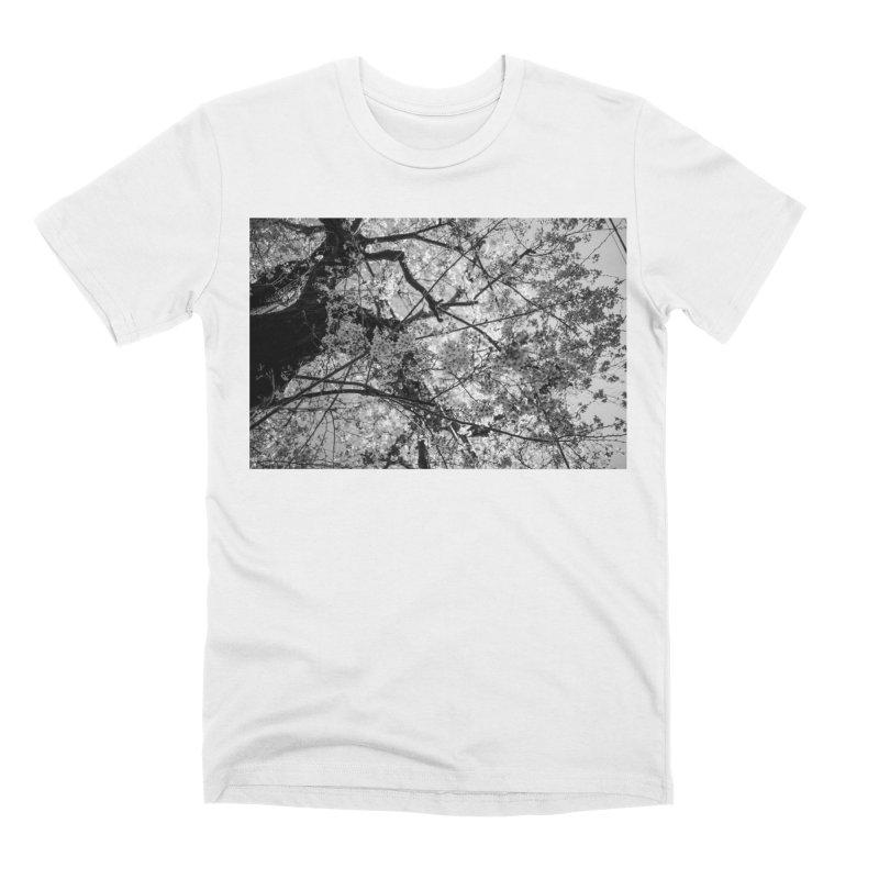 Sakura Men's T-Shirt by Street Sheets