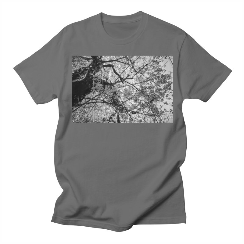 Sakura Men's T-Shirt by Street Sheets