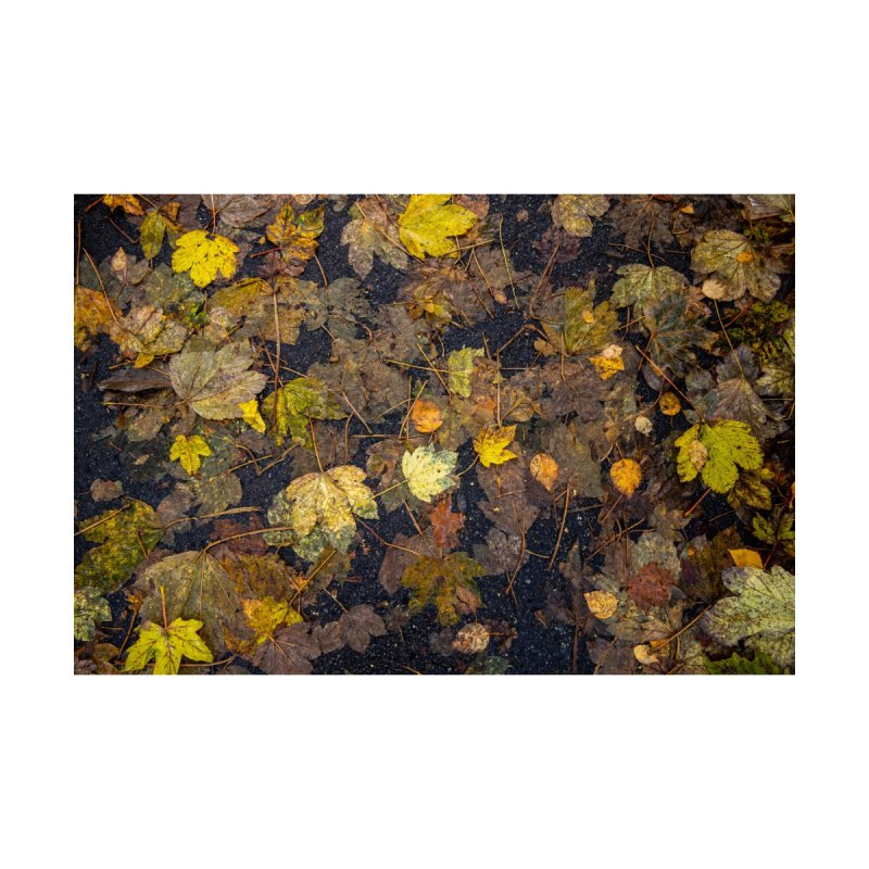Wet Leaves Home Rug by Street Sheets