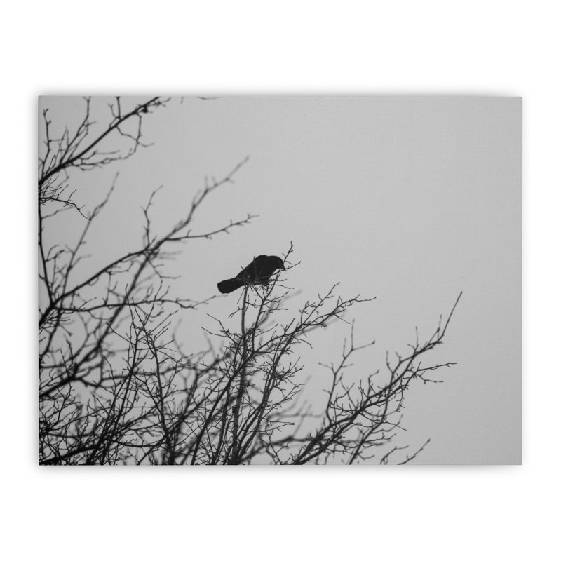 Crow Tree Home Stretched Canvas by Street Sheets
