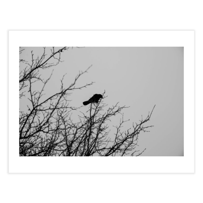 Crow Tree Home Fine Art Print by Street Sheets