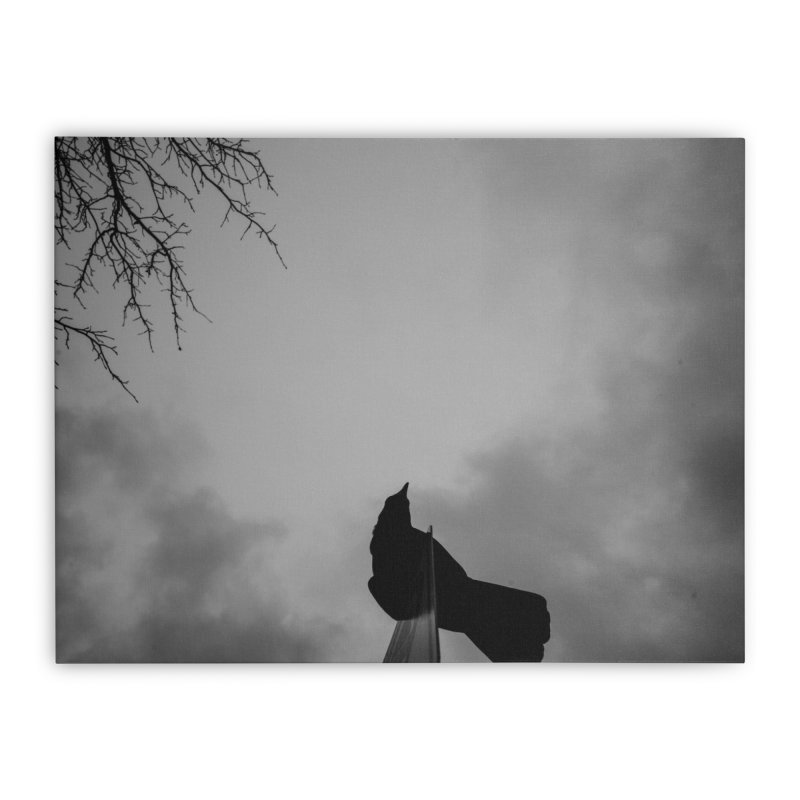 Crow Sky Home Stretched Canvas by Street Sheets