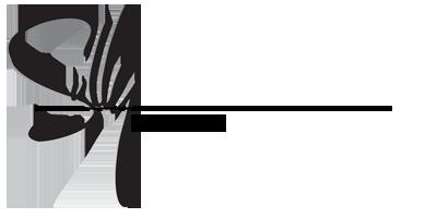 Sully Guitars Merch Logo