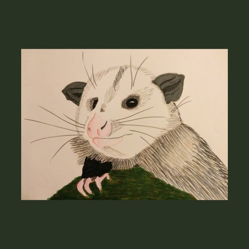 Opossum by Whimsical Wildlife Wares