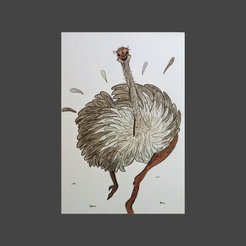 Jogging Ostrich by Whimsical Wildlife Wares