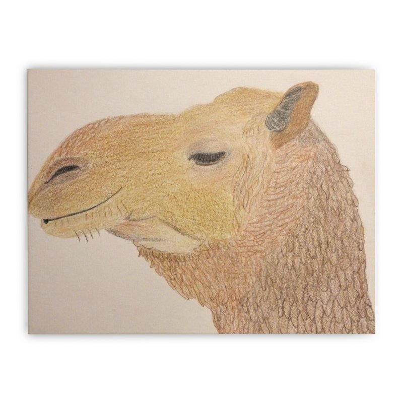 Camel Home Stretched Canvas by Whimsical Wildlife Wares