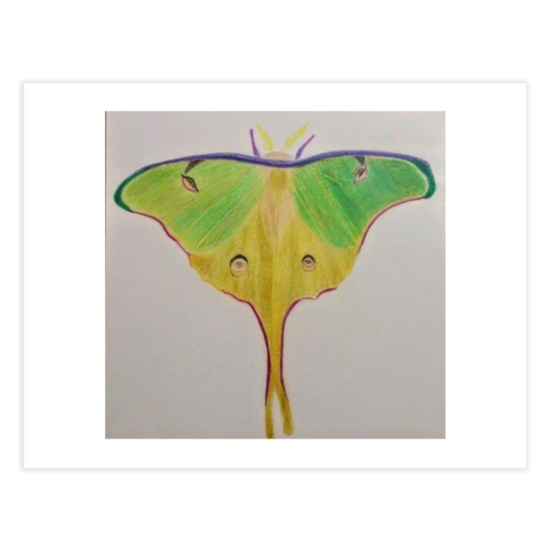 Luna Moth Home Fine Art Print by Whimsical Wildlife Wares