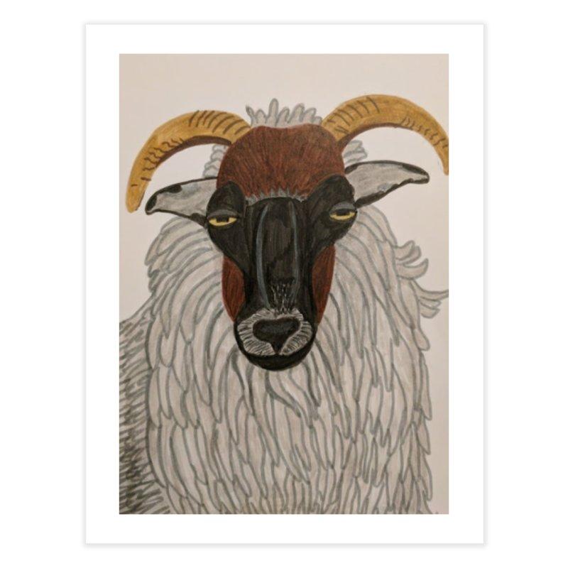 Irish sheep Home Fine Art Print by Whimsical Wildlife Wares