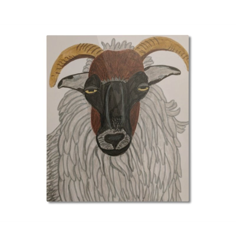 Irish sheep Home Mounted Aluminum Print by Whimsical Wildlife Wares