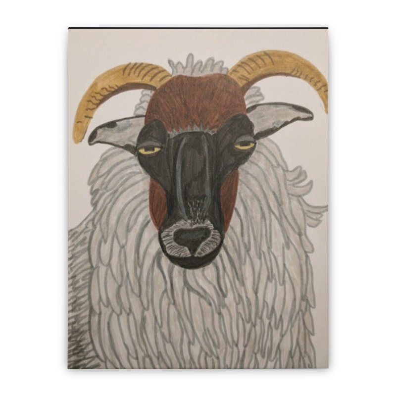 Irish sheep Home Stretched Canvas by Whimsical Wildlife Wares