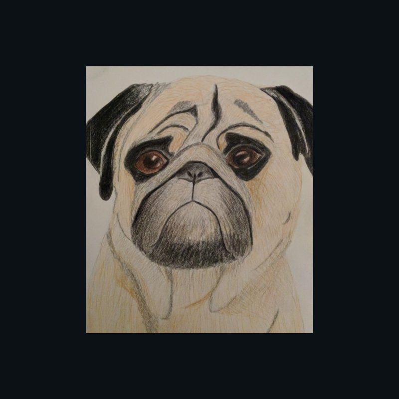 Pug by Whimsical Wildlife Wares