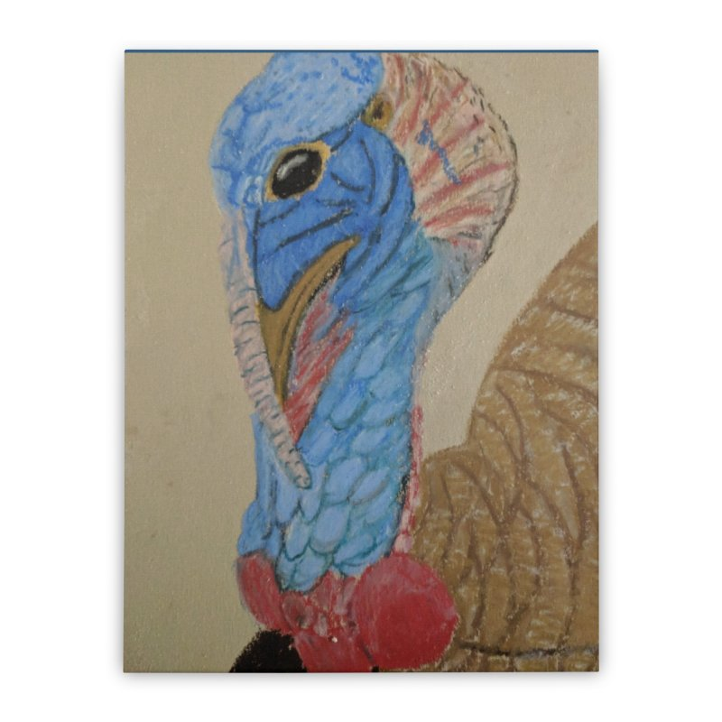 Turkey Home Stretched Canvas by Whimsical Wildlife Wares