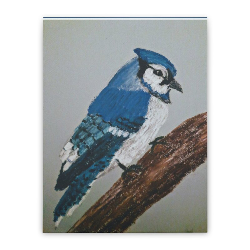 Blue Jay Home Stretched Canvas by Whimsical Wildlife Wares