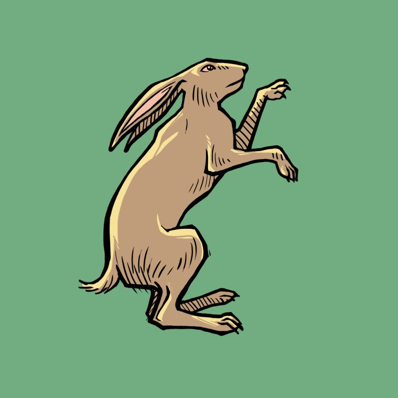 the Hare by Supersticery Shop