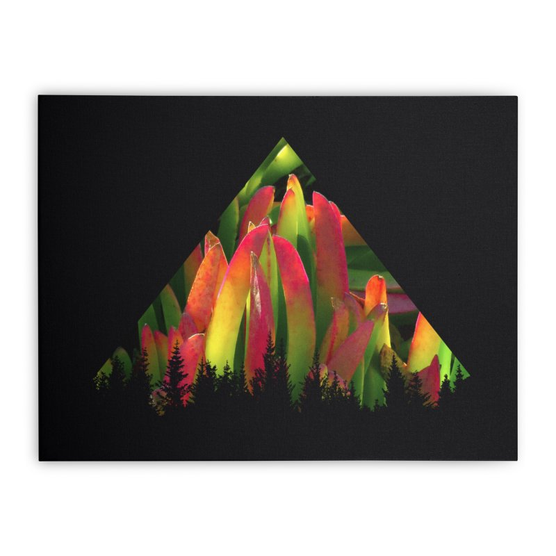 Succulent Pyramid Home Stretched Canvas by sustici's Artist Shop