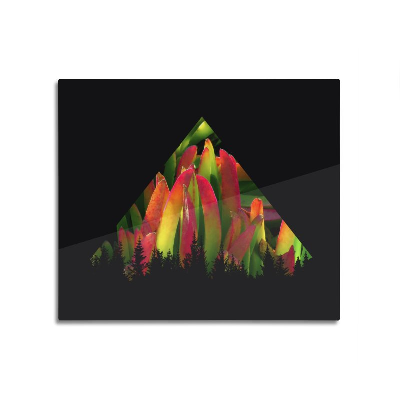 Succulent Pyramid Home Mounted Aluminum Print by sustici's Artist Shop