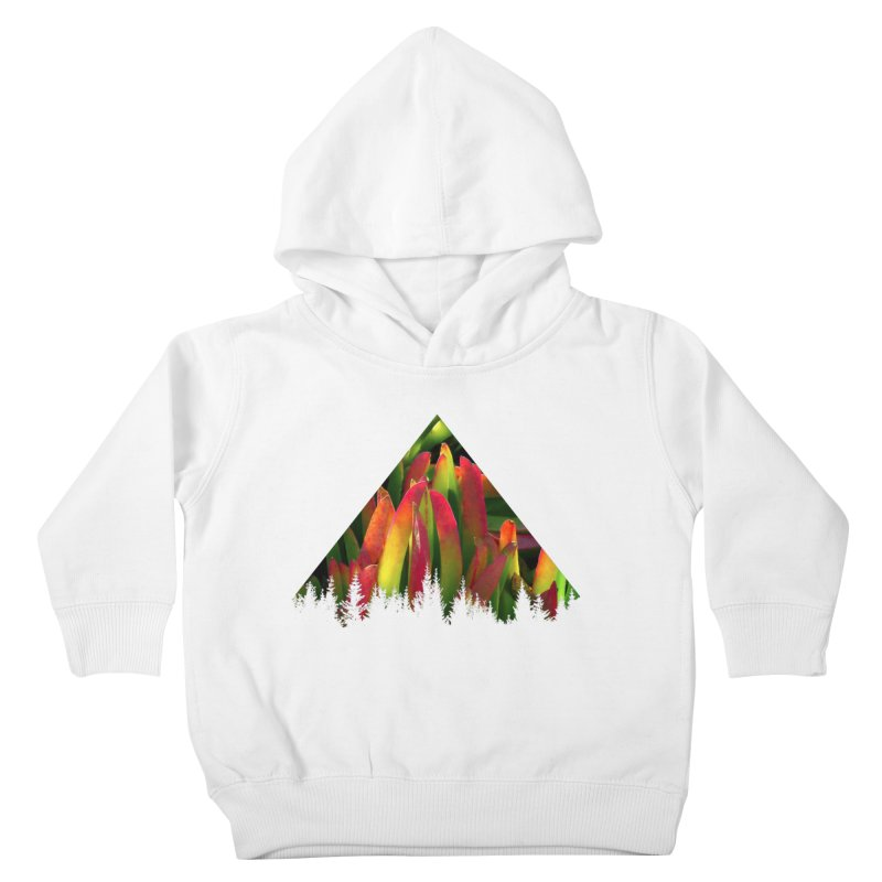 Succulent Pyramid Kids Toddler Pullover Hoody by sustici's Artist Shop