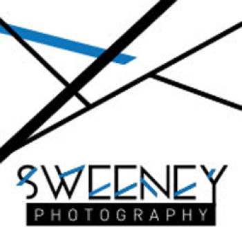 Mary Sweeney's Artist Shop Logo