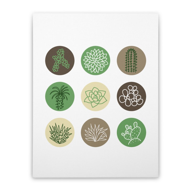 Succulents 1 Home Stretched Canvas by Tejedor shop