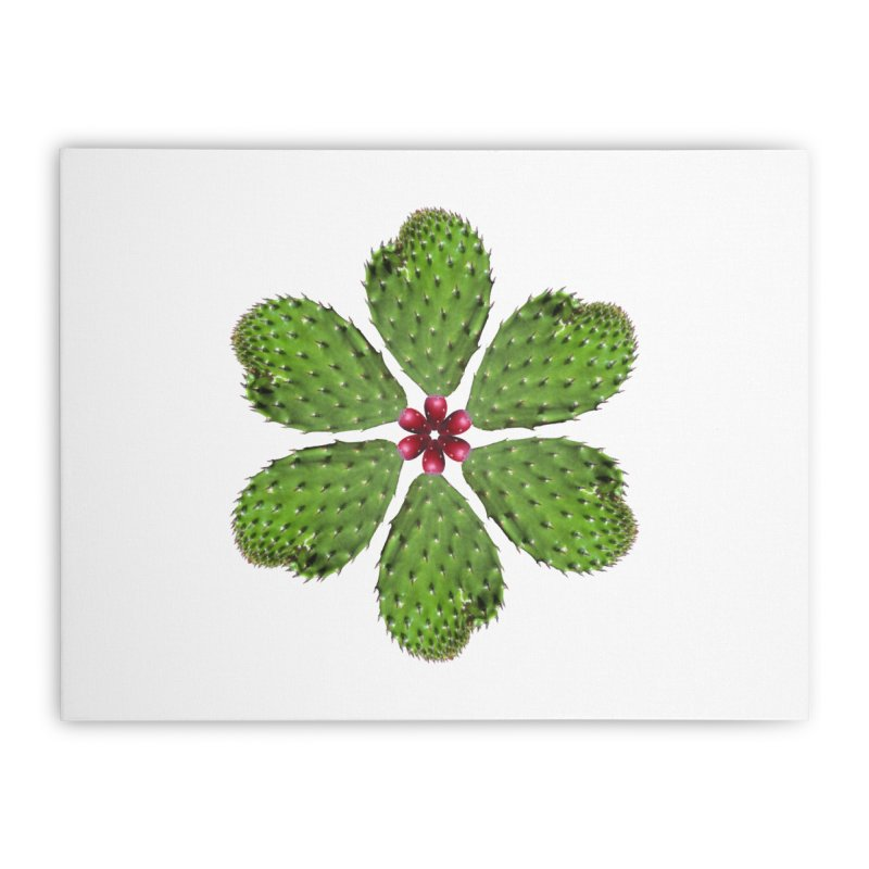 Cactus flower Home Stretched Canvas by Tejedor shop