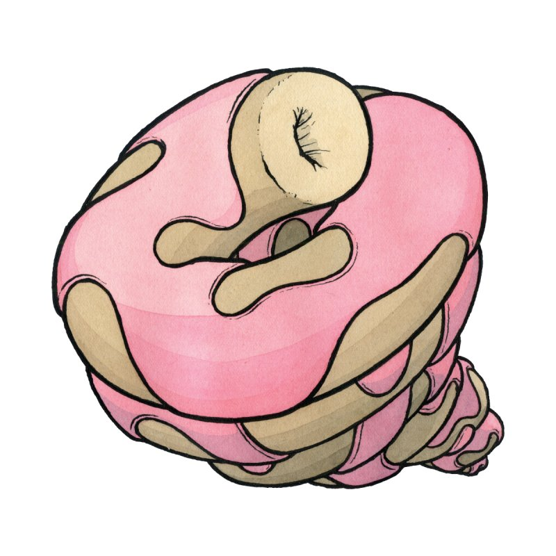 Infinity Donut by Scott Teplin's Chazerai Bazaar