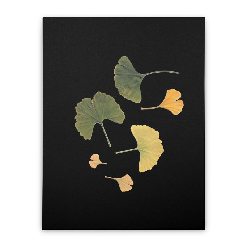 Ginkgo for you. Home Stretched Canvas by terryann's Artist Shop