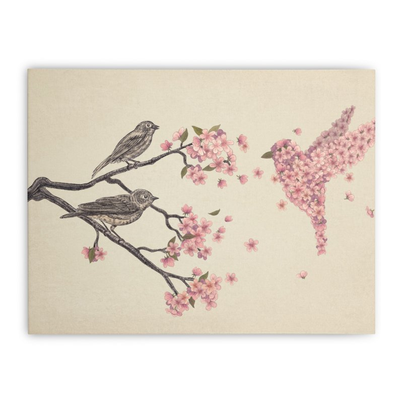 Blossom Bird Home Stretched Canvas by terryfan