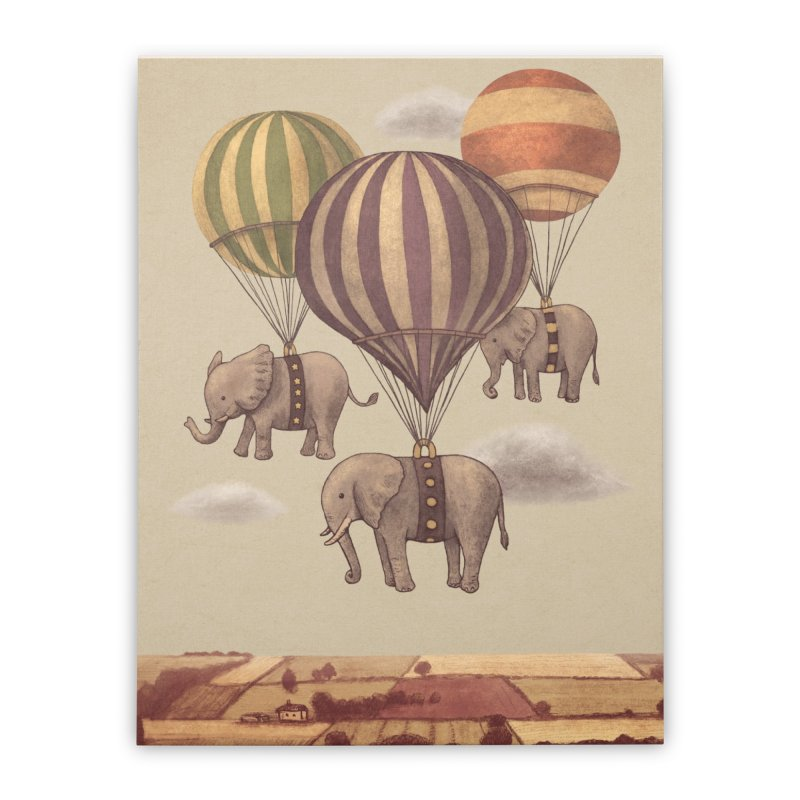 Flight of the Elephant Home Stretched Canvas by terryfan