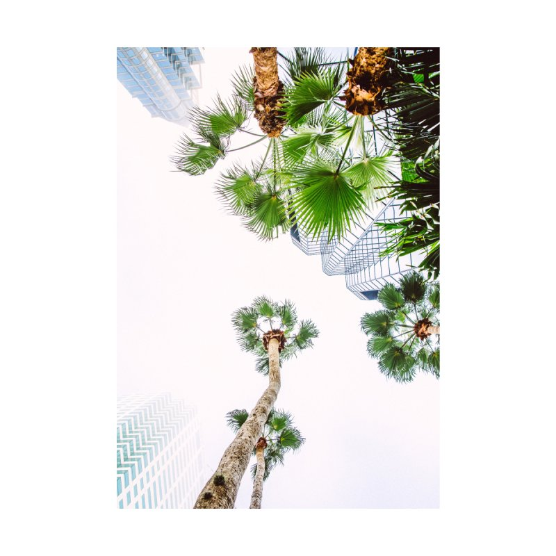 TAMPA | LOOK UP Home Fine Art Print by thatssotampa's Artist Shop