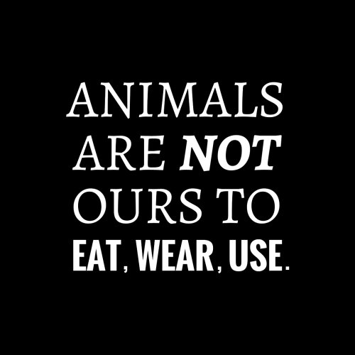 Animals-Are-Not-Ours-To-Eat-Wear-Use