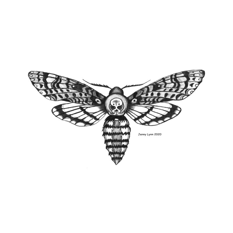 Deaths Head Moth Home Framed Fine Art Print by artfulworldofjennylynn's Artist Shop