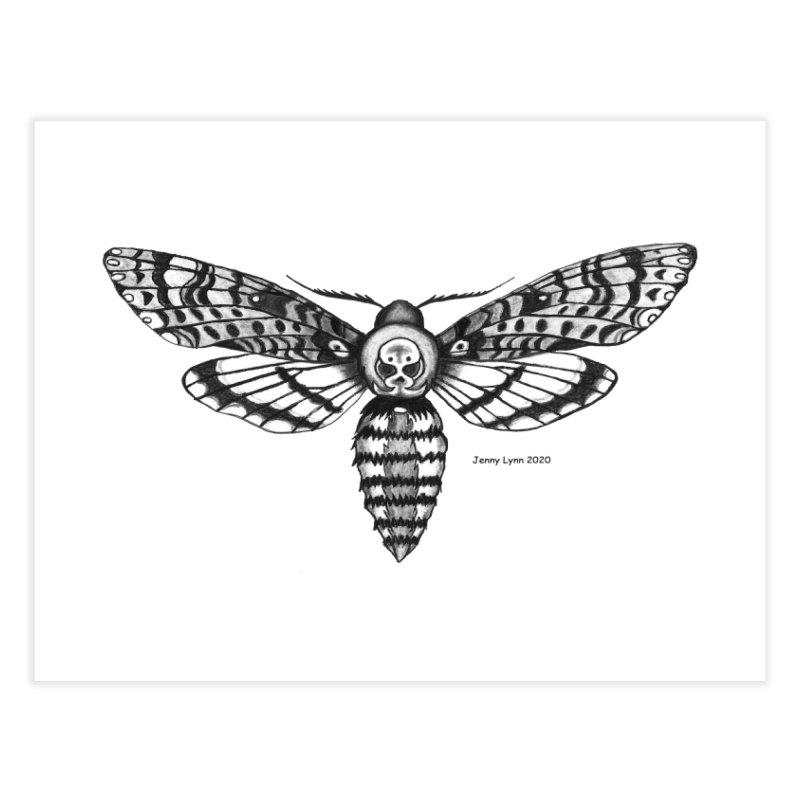 Deaths Head Moth Home Fine Art Print by artfulworldofjennylynn's Artist Shop