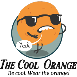 thecoolorange Logo