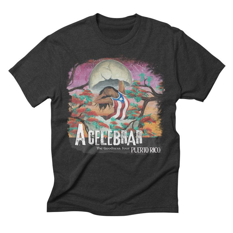 A Celebrar Apparel Men's Triblend T-Shirt by The Goodness Tour Artist Shop