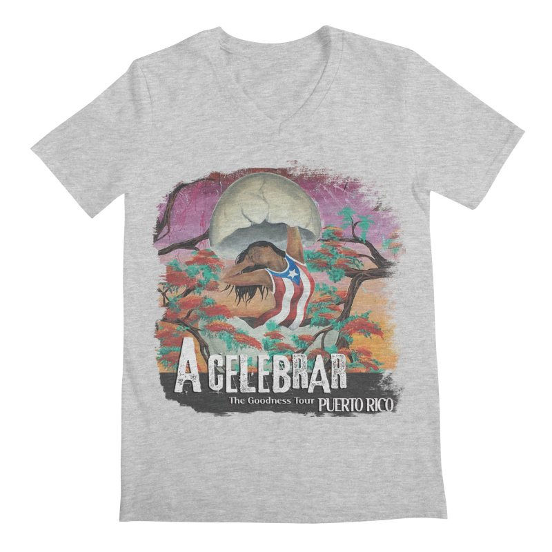 A Celebrar Apparel Men's Regular V-Neck by The Goodness Tour Artist Shop