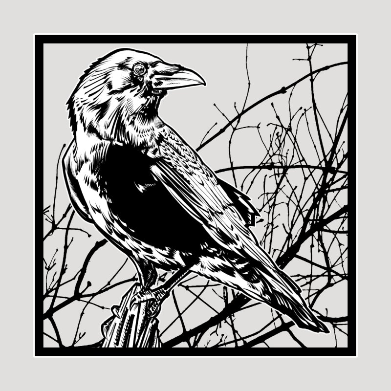 Old Crow by theillustrator's Artist Shop