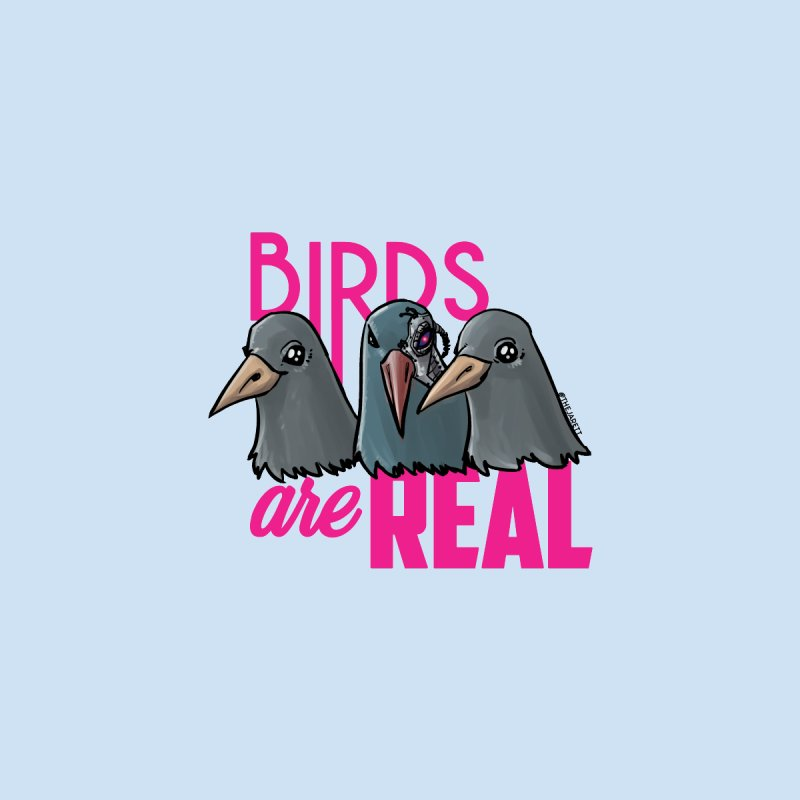 Birds ARE Real - Pink Men's T-Shirt by Jarett Walen's Happy Fun Shop of Joy and Pretty Pi