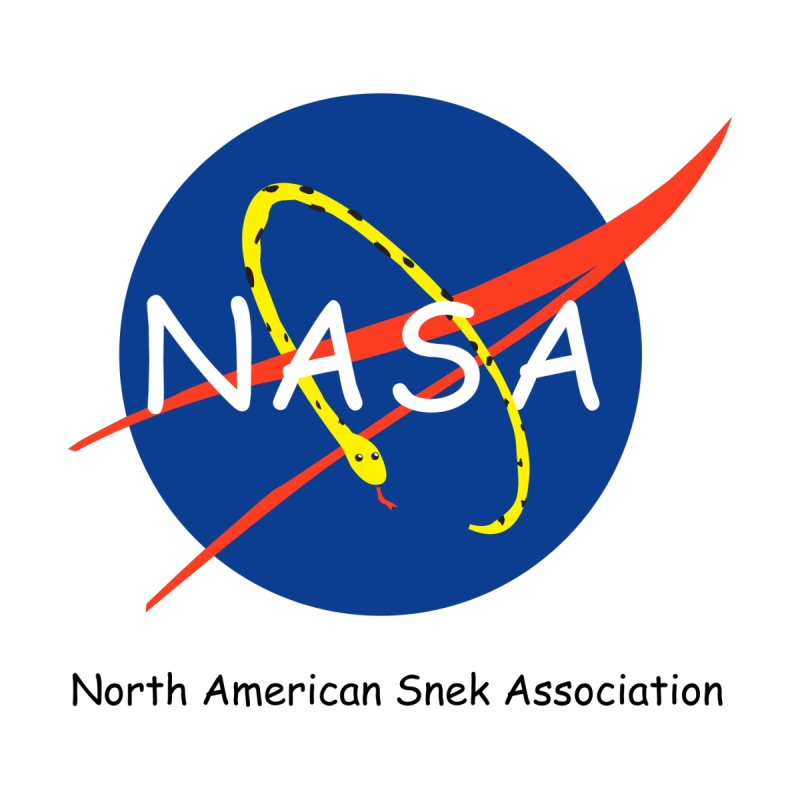 NASA- North American Snek Association Women's T-Shirt by theletterandrew's Artist Shop