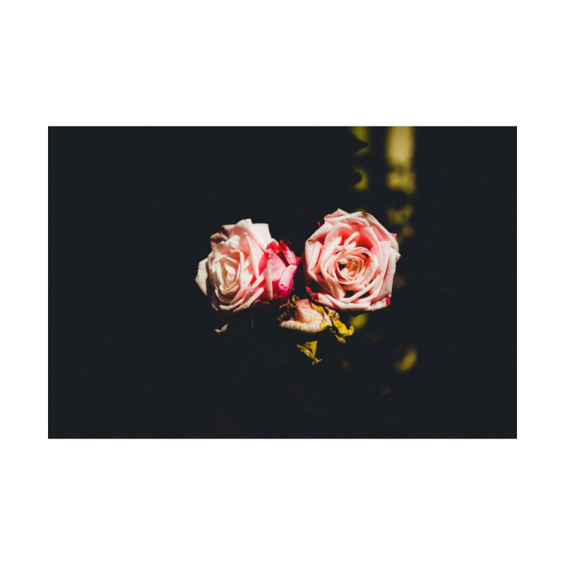 Roses None  by thelion's Artist Shop